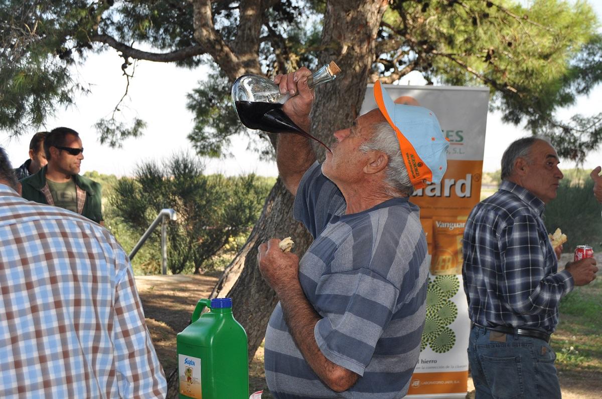 Les borges blanques acull la iv jornada de l 39 olivera amb l - El tiempo les borges blanques ...